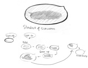 Nightlight-silkworm
