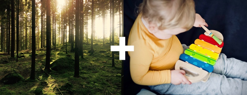 nature-xylophone.jpg