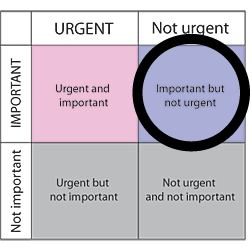 urgemt diagram-01.png