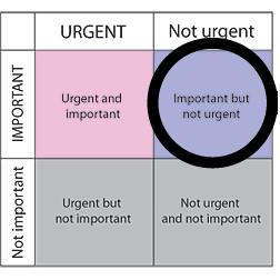 urgemt diagram-01.png